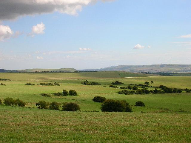Old Field System near Balmer Down