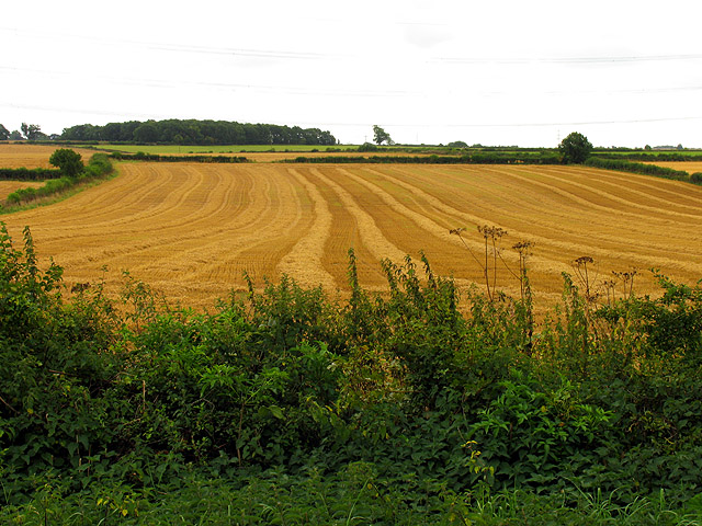 Farmland near Nettleton