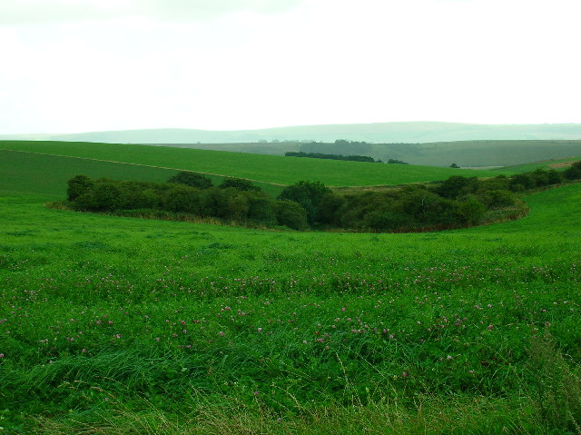 Ancient enclosure near Streathill Farm