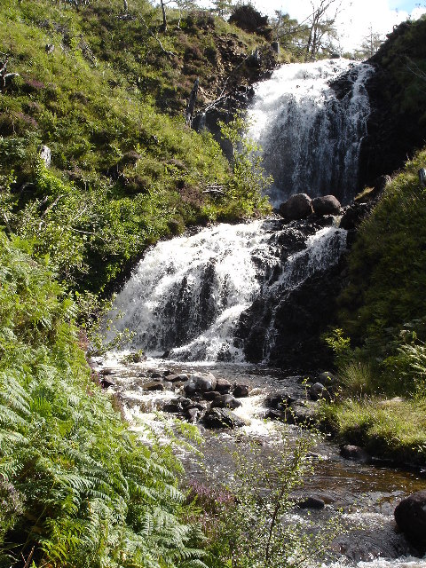 Flowerdale Falls