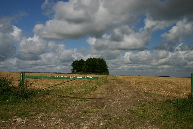 Track near Ashley