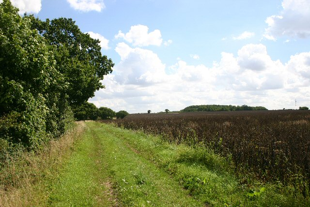 Footpath to Hargrave Hall