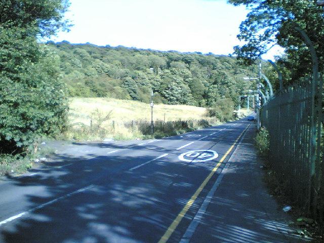Castland Hill Woods