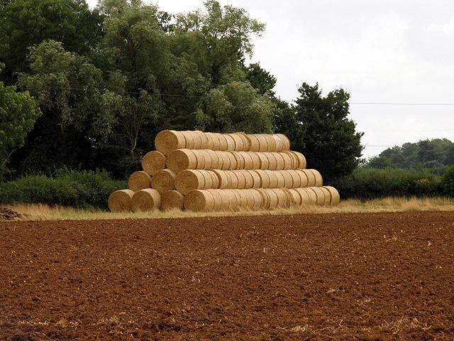 Ploughed Field near Grittleton
