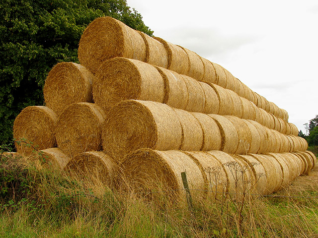 Straw Bales in Grittleton