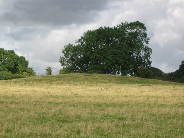 Tumulus near Little Ponton