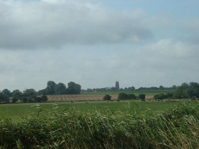 Fields near Martham