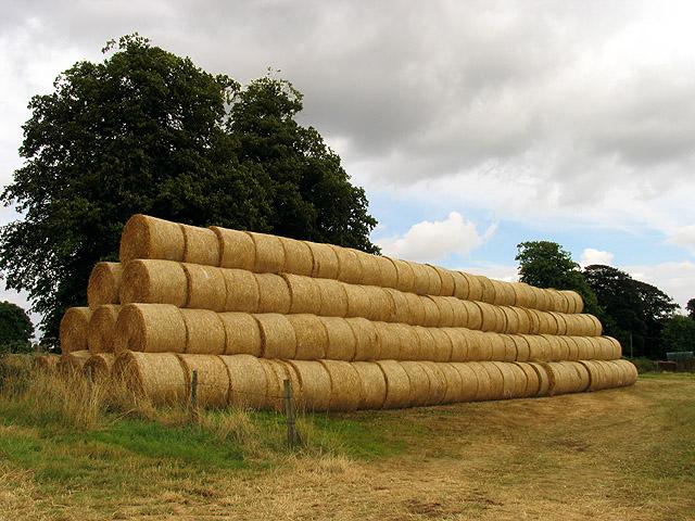 Farmland in Grittleton