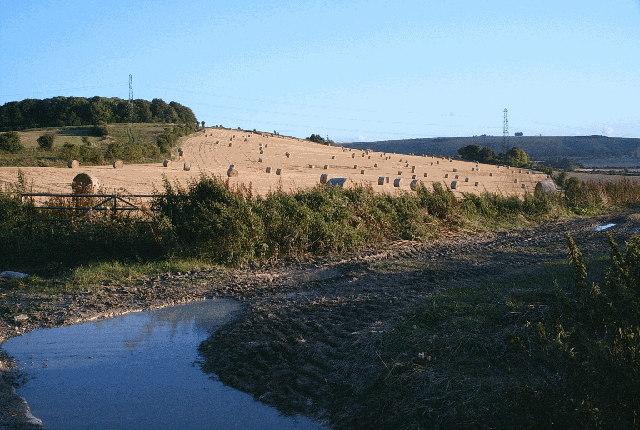 Footpath to Marten