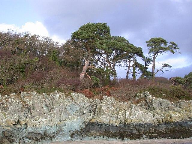 View from Garvellan Rocks inland, Fleet Bay