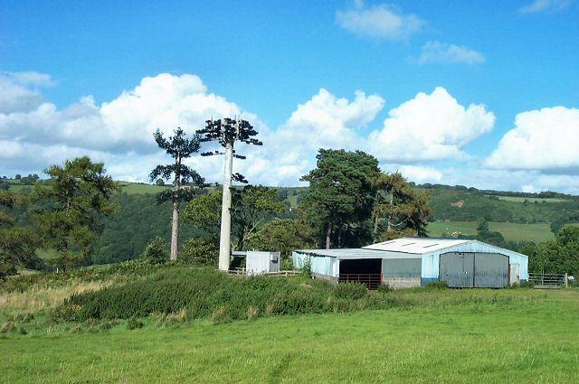 Telecomms mast near Moretonhampstead