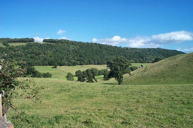 Farmland above Wray Barton - Moretonhampstead