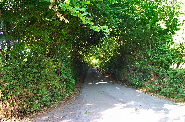 Road south of Moretonhampstead