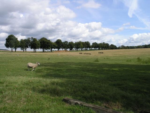 Farmland near Godstone
