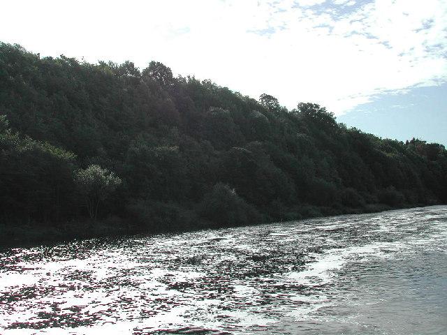 Gibbet Hill