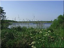 SW7319 : Croft Pascoe Pool by Chris Towner