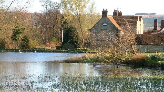 Brompton Ponds