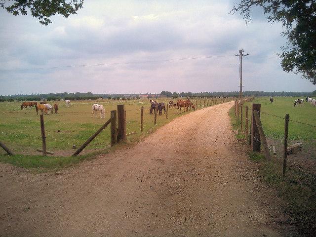 Dilton Farm