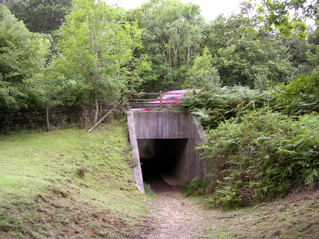 Underpass beneath the A337 connecting Spaniards Hole to Whitley Wood, New Forest