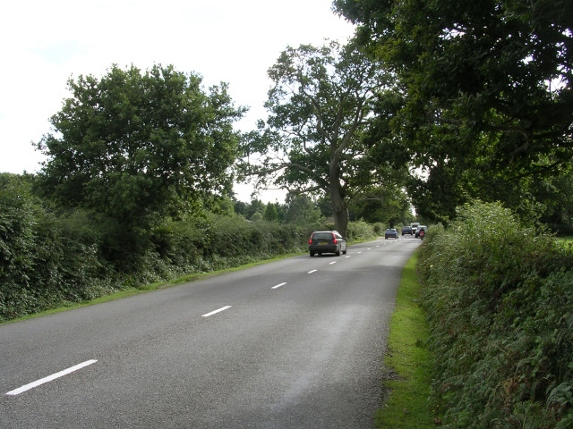 The B3054 on its way to Beaulieu, New Forest