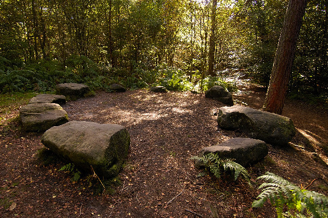 'Druid's Circle' The Edge, Alderley Edge