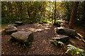 SJ8677 : 'Druid's Circle' The Edge, Alderley Edge by Andrew Huggett
