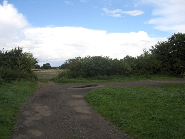 Lane end near Nunley Wood