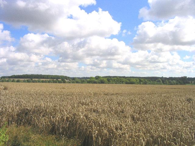 Hoo Green, Suffolk