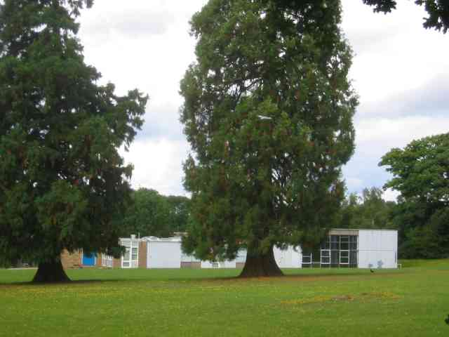 Jupiter Drive Junior School  off Queensway Hemel Hempstead