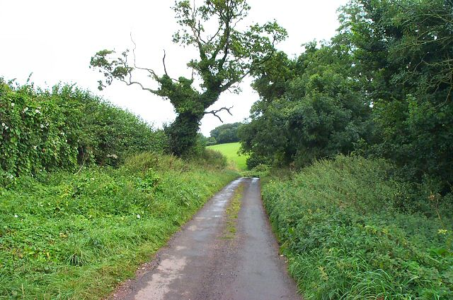 South Devon Lane