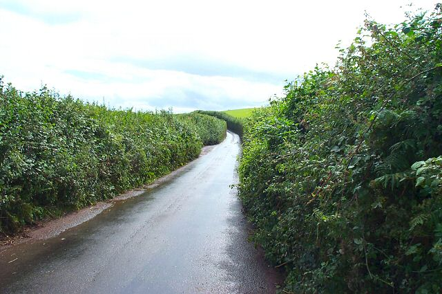 Devon country road