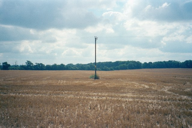 Post and lines in cut cornfield