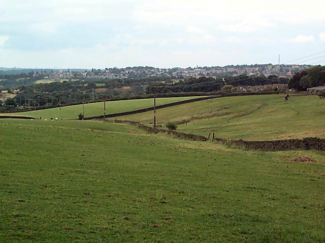 Green belt near Priesthorpe