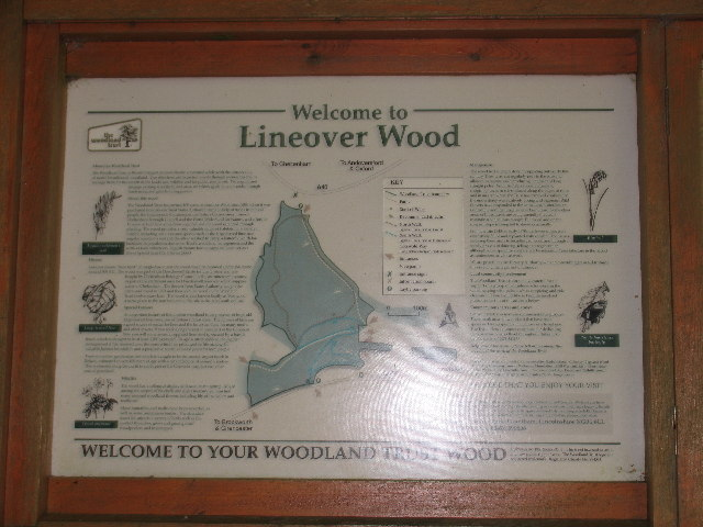 Lineover Wood Information Board