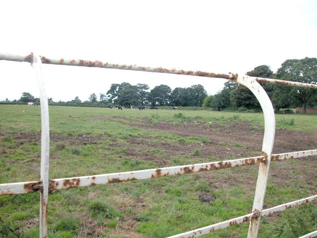 Littleton Pasture