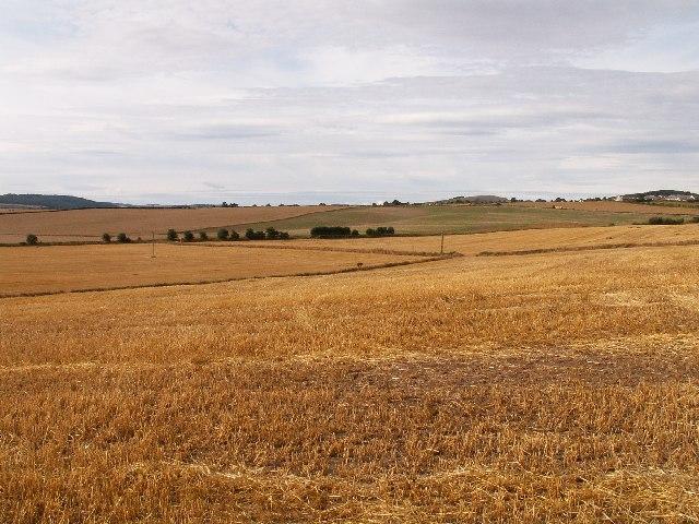 Fields looking towards Balmullo