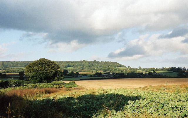 Payhembury: Hembury from near Haskins Cross