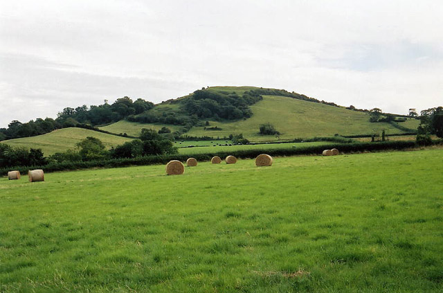 East Brent: Brent Knoll from the north