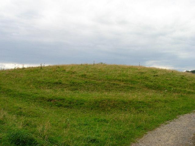 Motte and Bailey earthwork, Castlefields, Hartfield