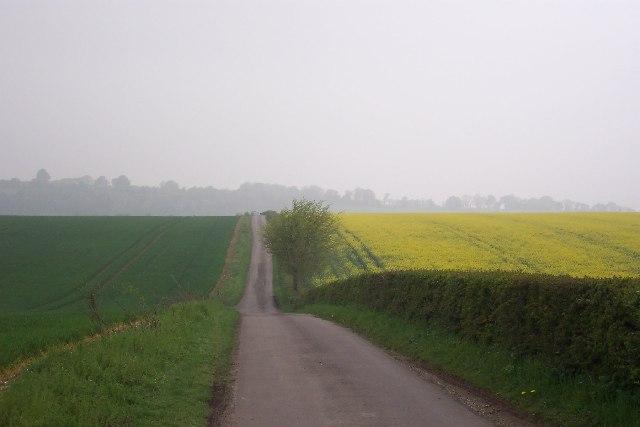 Roman Road on Ashley Down