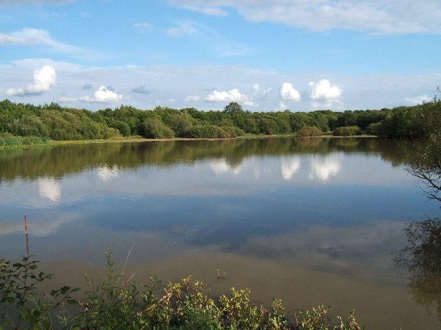 Great Pond, Epsom Common
