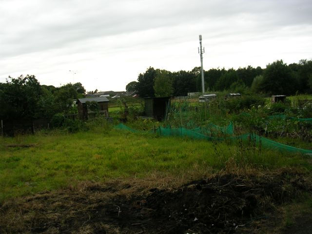 Allotments by the M60