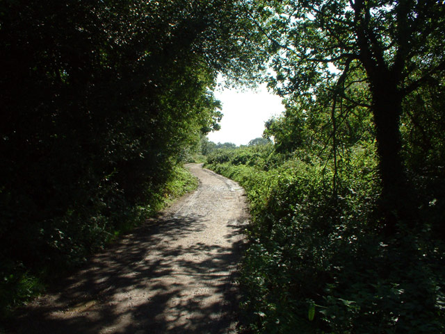 Footpath from Hayes to Locksbottom BR2