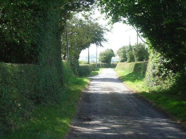 The lane between Stapleton and Lower Kinsham