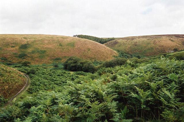 Brendon: site of medieval village