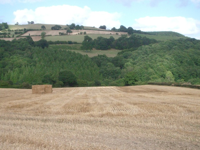 Fields, Limebrook Wood and the hill beyond