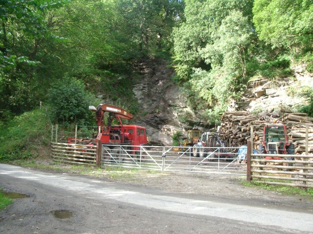 Old quarry west of Birtley
