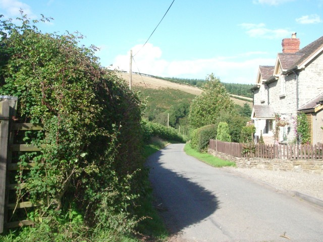 The lane near Boresford Farm
