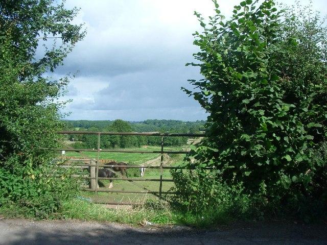 Fields east of Risbury