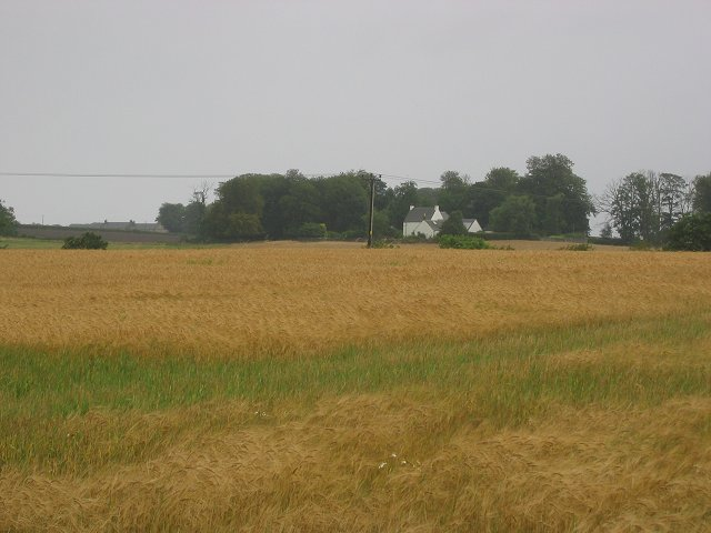 Barley Field, Duddingston.